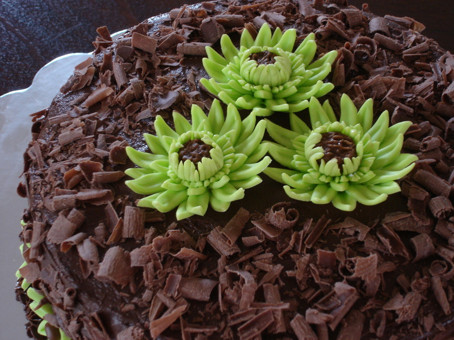 Gerber Daisies Cake on Cake Central