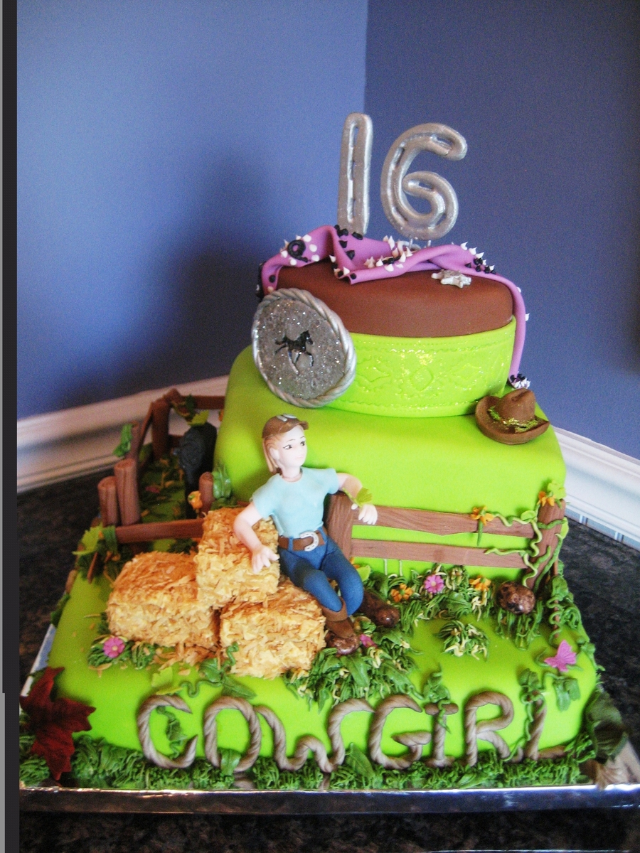 Incredible 6 Year Old Cowgirl Birthday Cake Cakecentral Com Funny Birthday Cards Online Alyptdamsfinfo