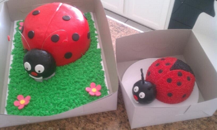Lady Bugs  on Cake Central