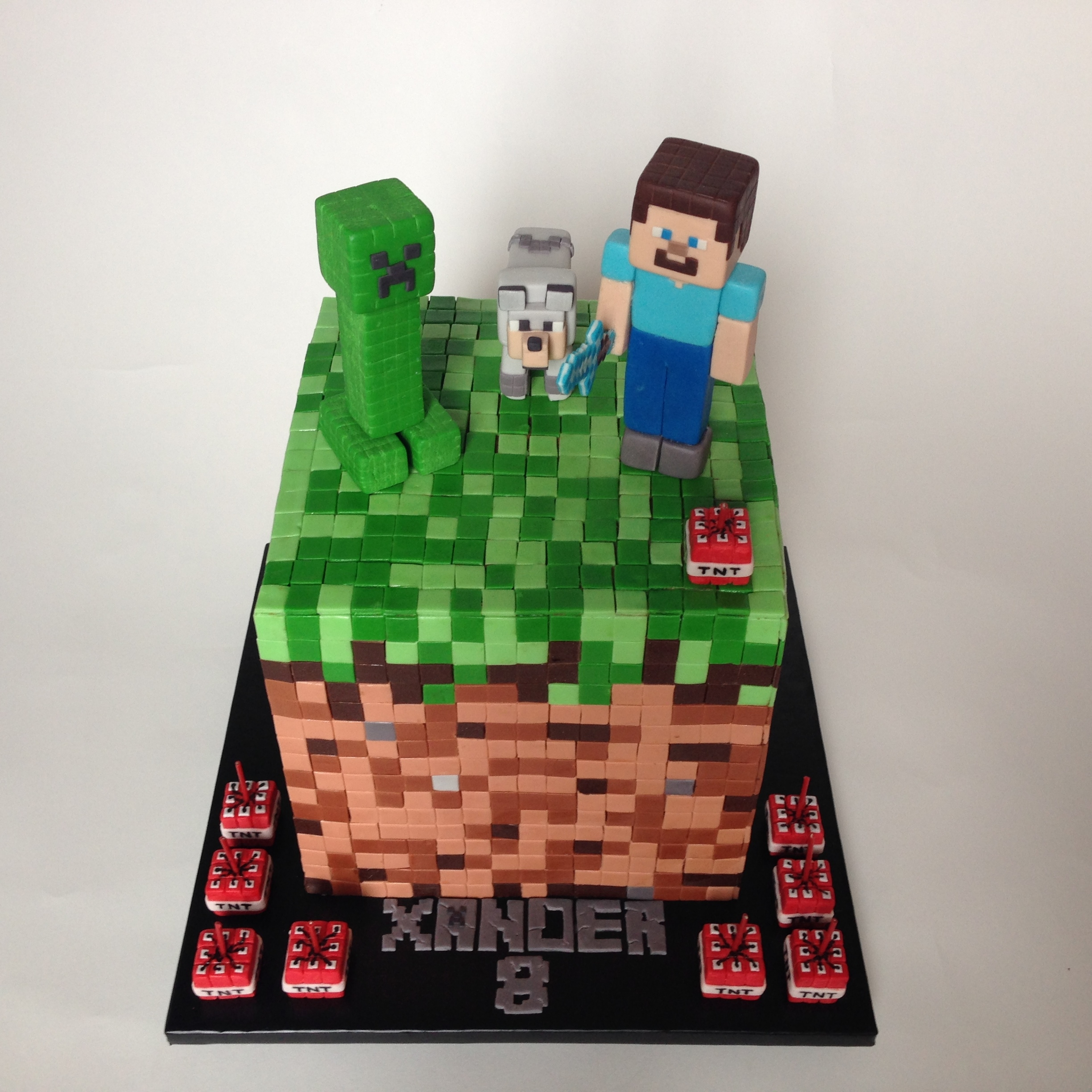 Minecraft Images For Birthday Cake : Minecraft Cake - CakeCentral.com