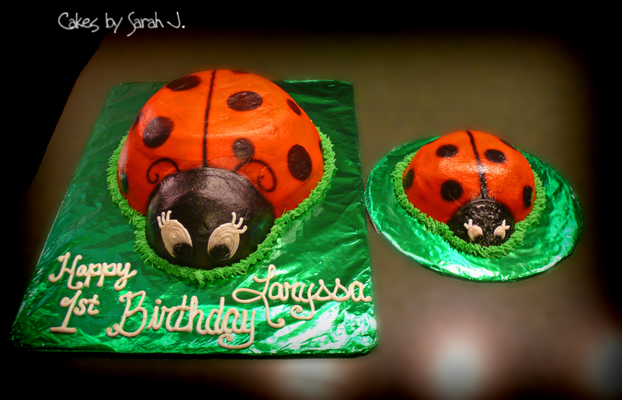 Lady Bug 1St Birthday on Cake Central