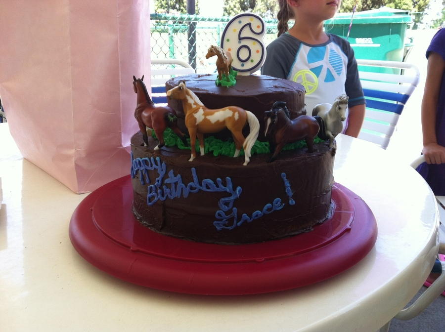 Horse Birthday Cake For A 6 Year Old Cakecentral