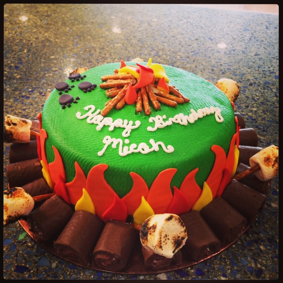Campfire Birthday Cake  on Cake Central
