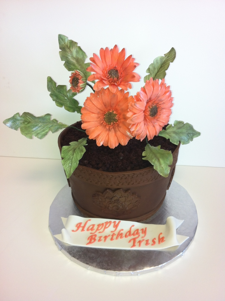 Gerber Daisy on Cake Central