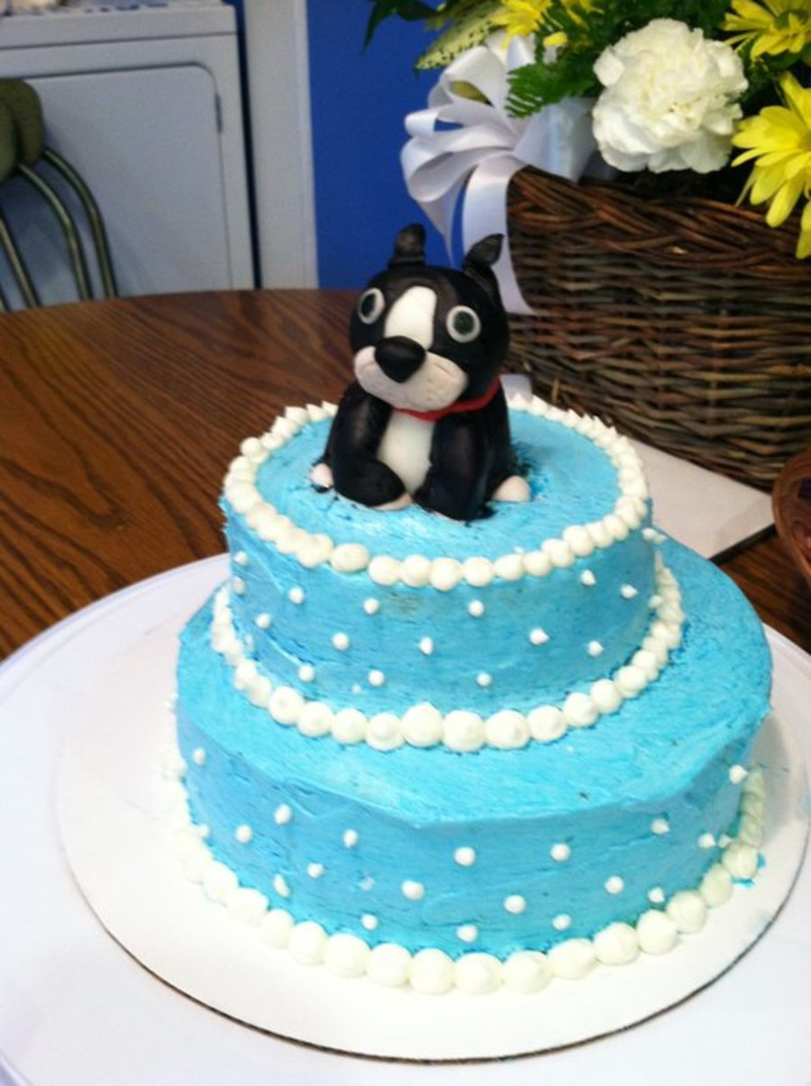 Amazing Boston Terrier Birthday Cake Cakecentral Com Personalised Birthday Cards Paralily Jamesorg