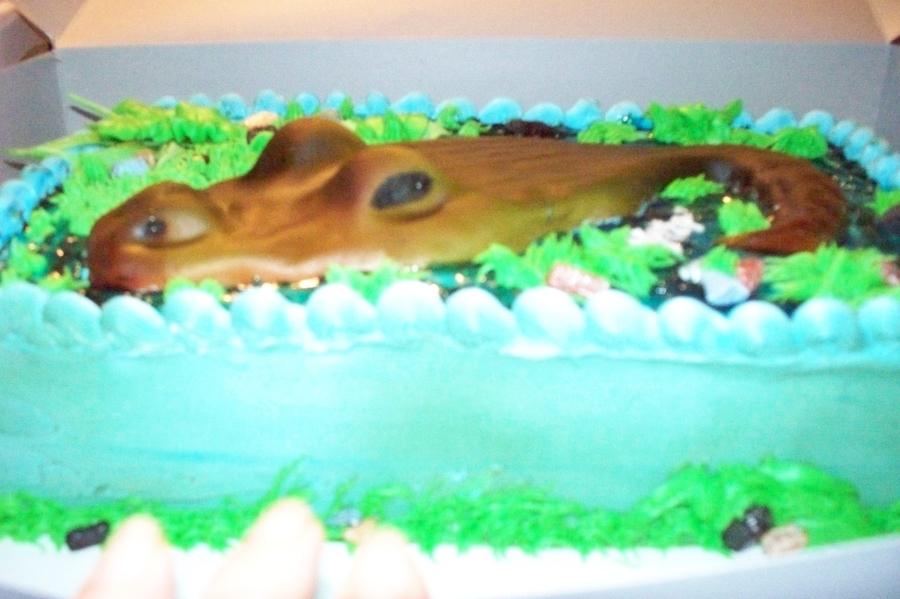 Gator Cake Cakecentral Com