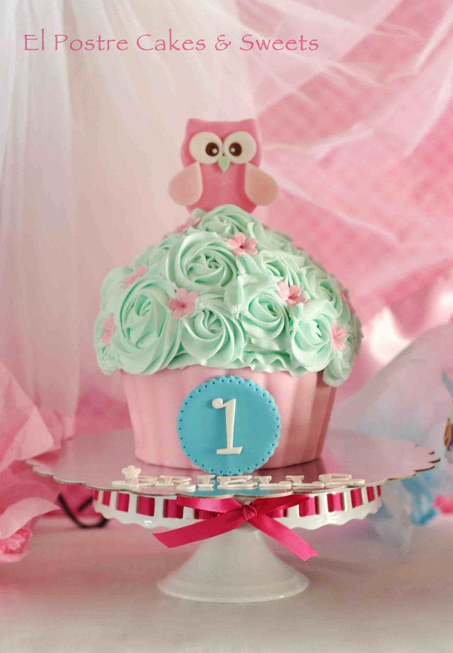 Owls Cake And Matching Giant Cupcake Cakecentral Com