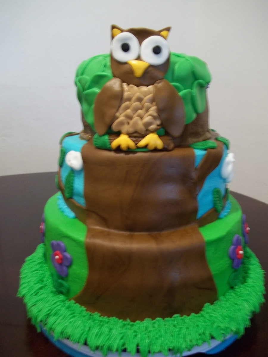 Owl Sitting In A Tree on Cake Central
