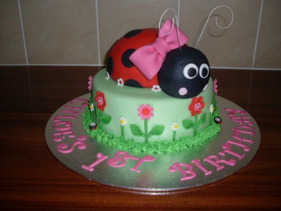 Lady Beetle Cake Recipes