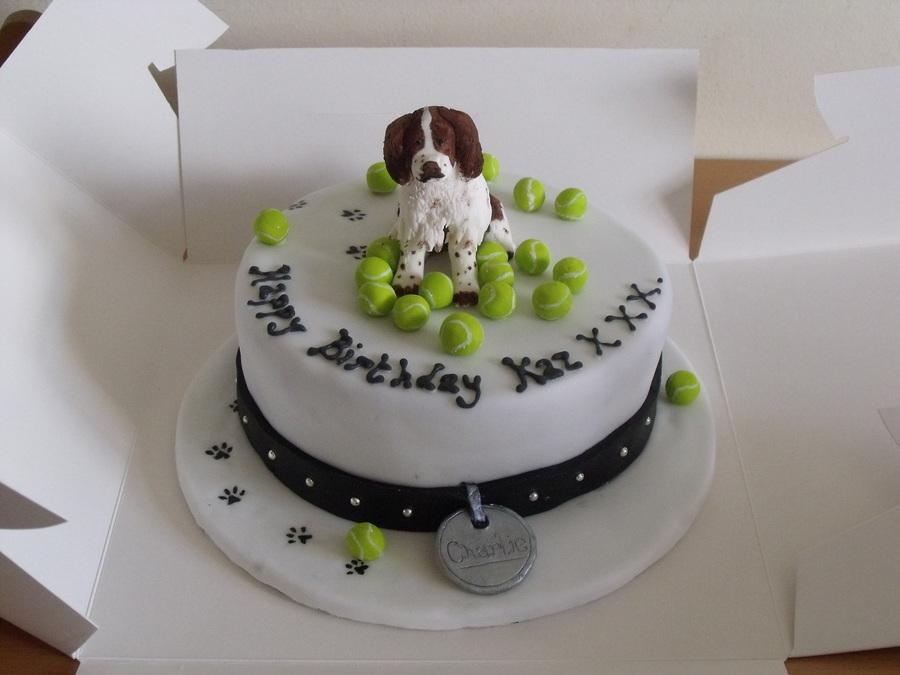 Springer Spaniel Cakecentral Com