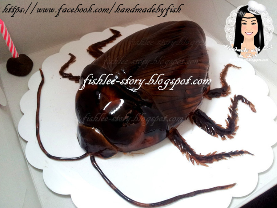 Cockroach Cake >. on Cake Central