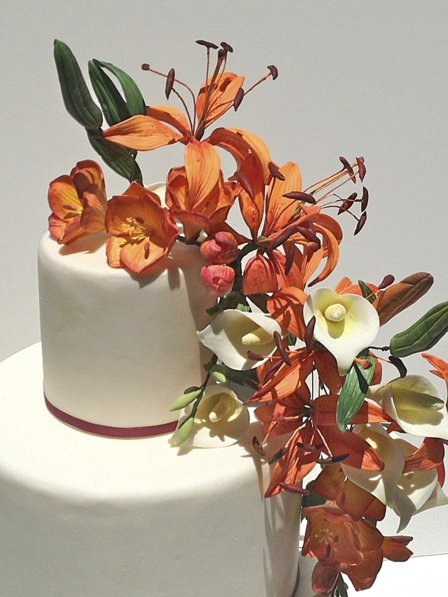 Enchantment on Cake Central