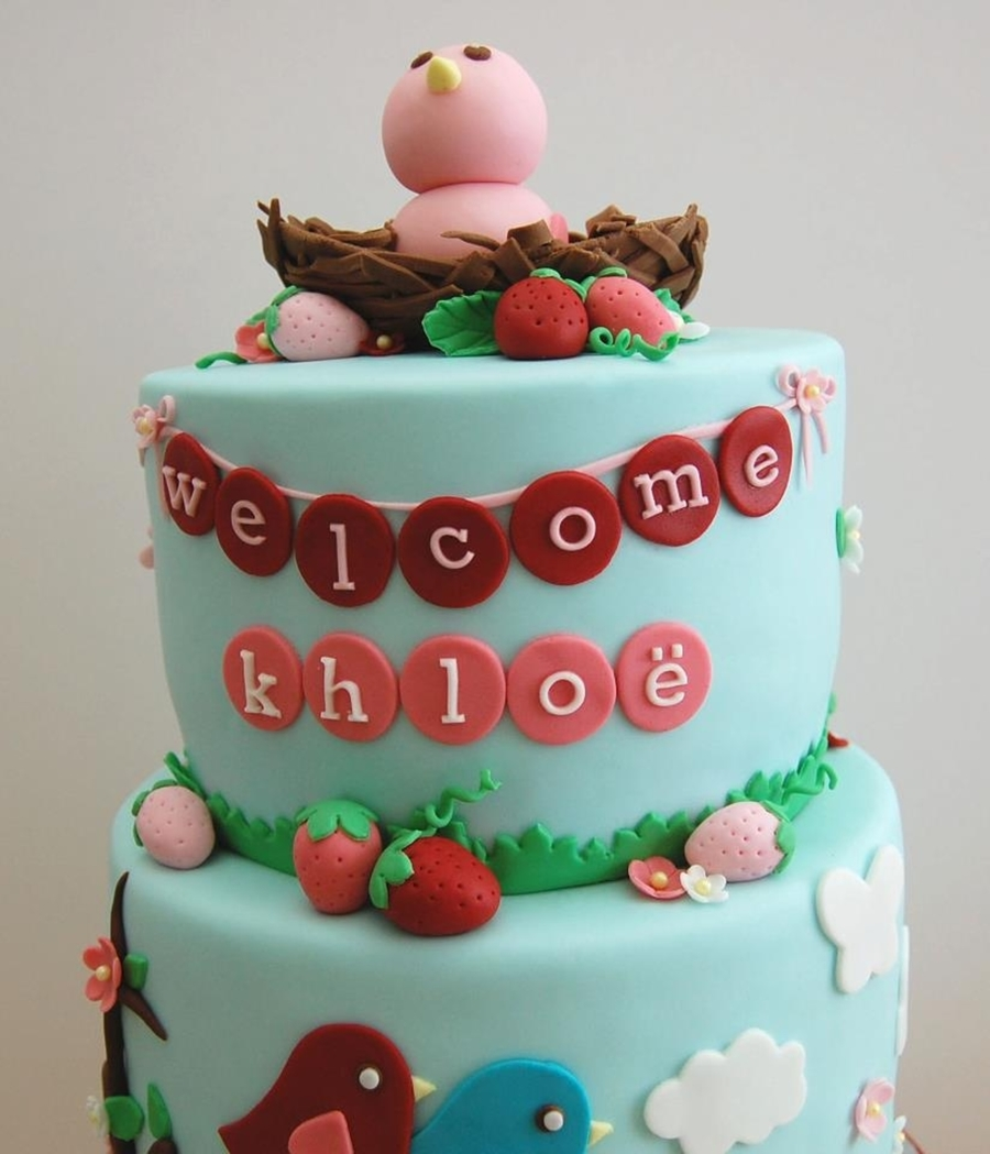 Berry Bird Baby Shower Cake Cakecentral Com