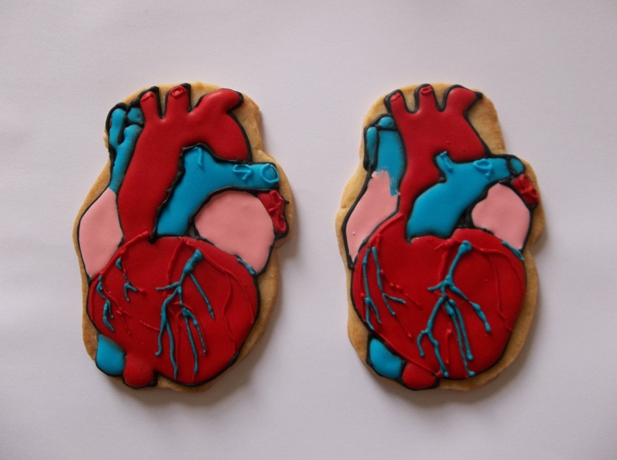 Anatomical Heart on Cake Central
