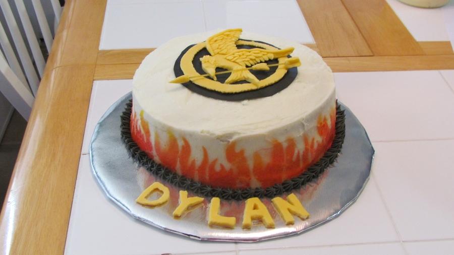 Hunger Games Birthday Cake CakeCentralcom