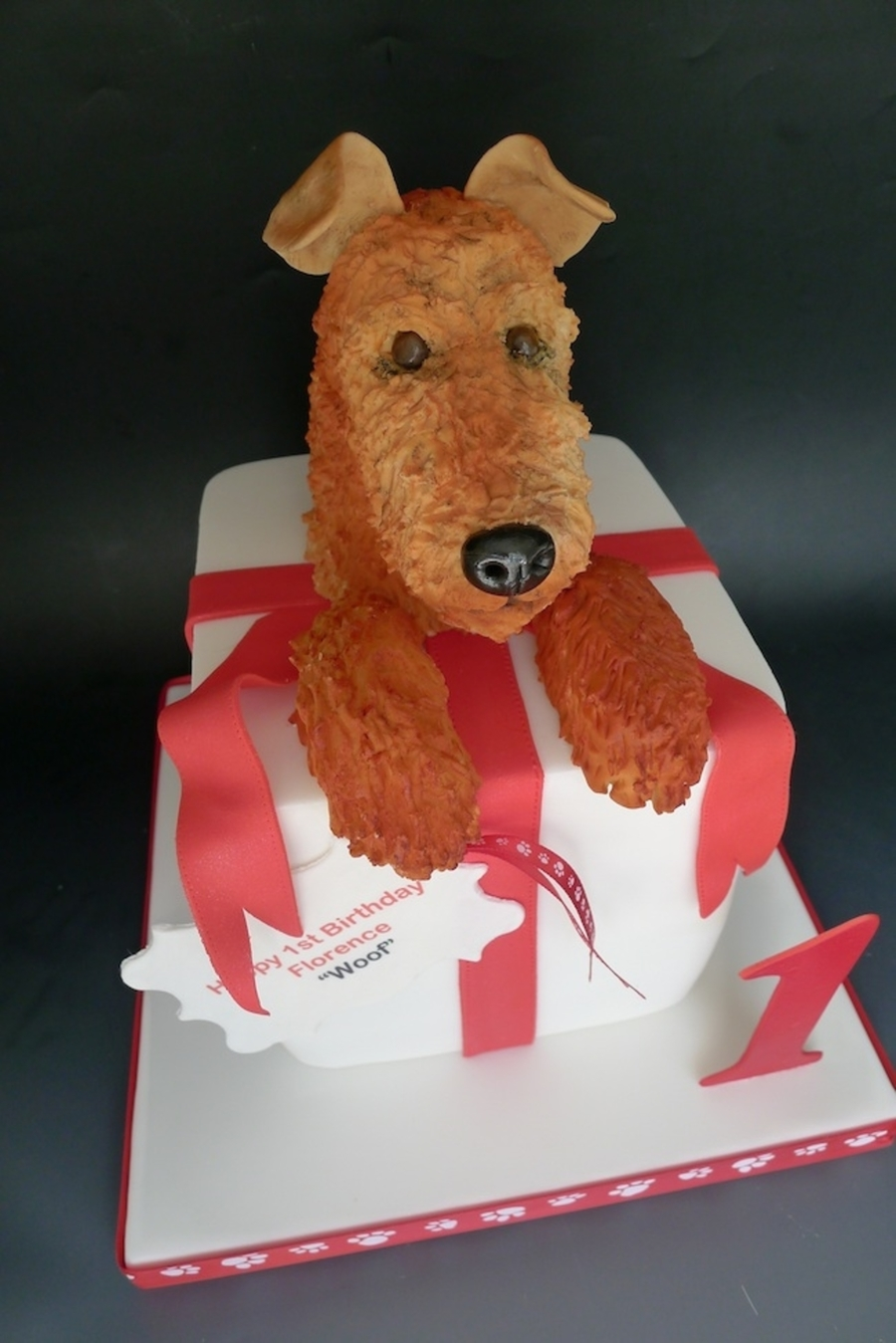 Florence's First Birthday, An Irish Terrier on Cake Central