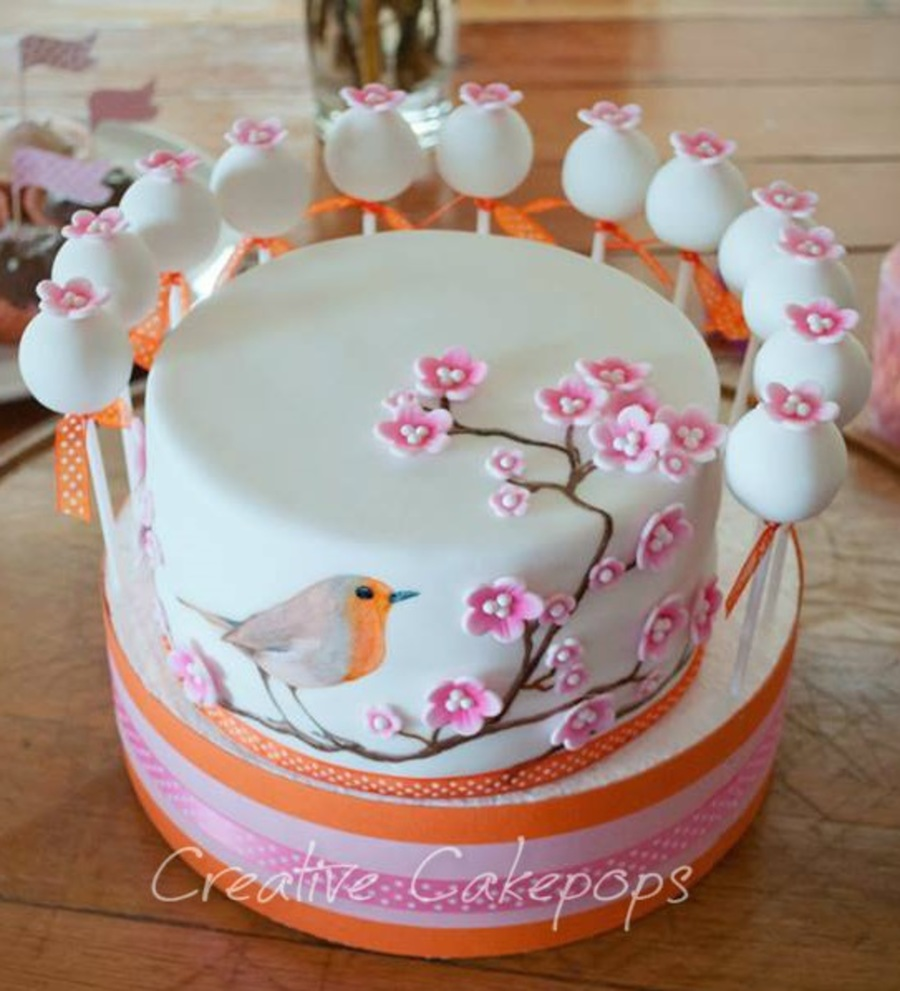 Hand Painted Bird Cake And Cake Pops Cakecentral Com
