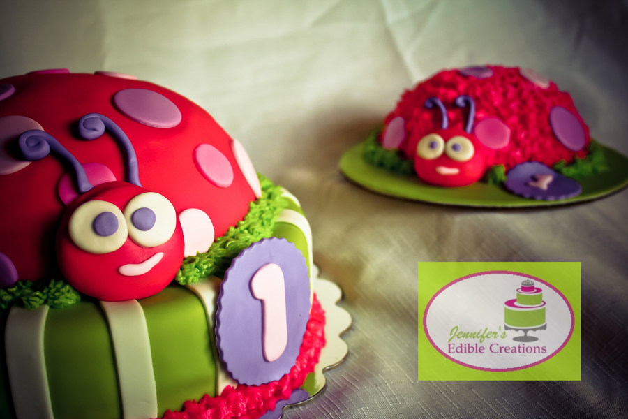 Ladybug Cakes For First Birthday Party on Cake Central