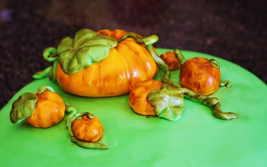 Pumpkin Patch on Cake Central