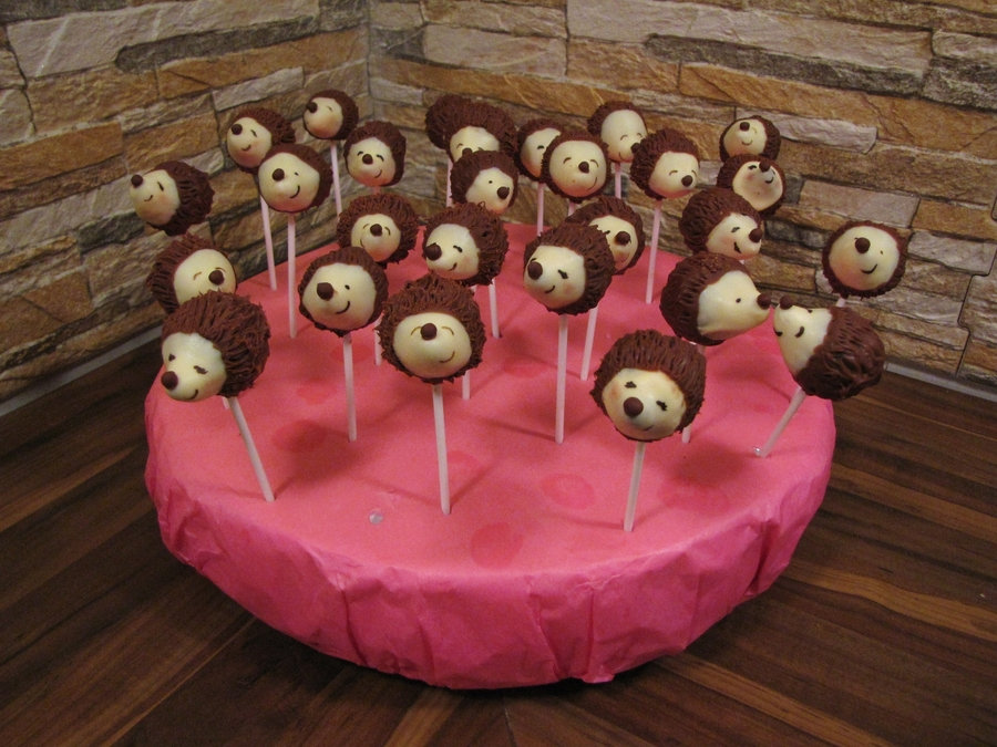 Hedgehog Pops on Cake Central