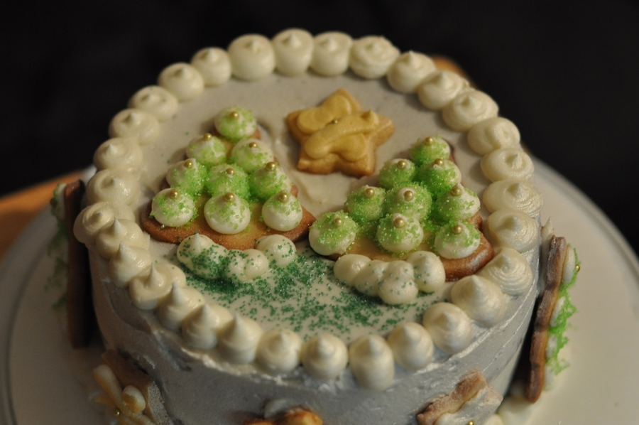 Winter Holiday Cake on Cake Central