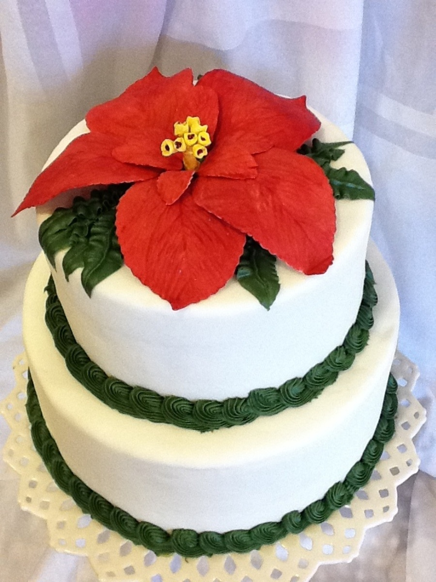Hand Made Gum Paste Sugar Poinsettia On Top Of Fondant Covered Cake on Cake Central