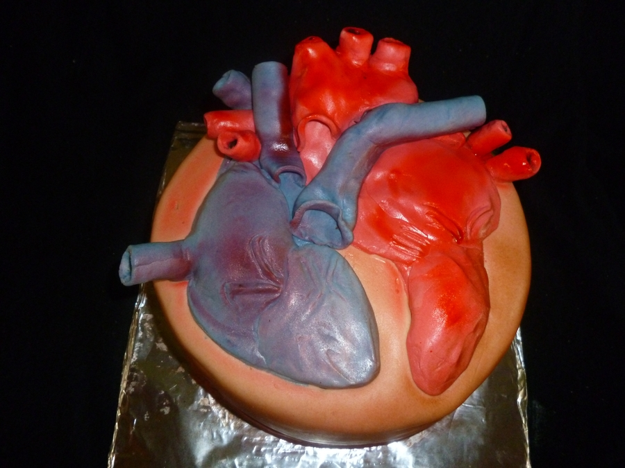Human Heart on Cake Central
