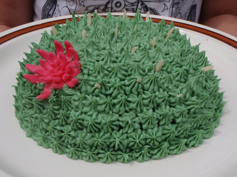 Flowering Cactus  on Cake Central