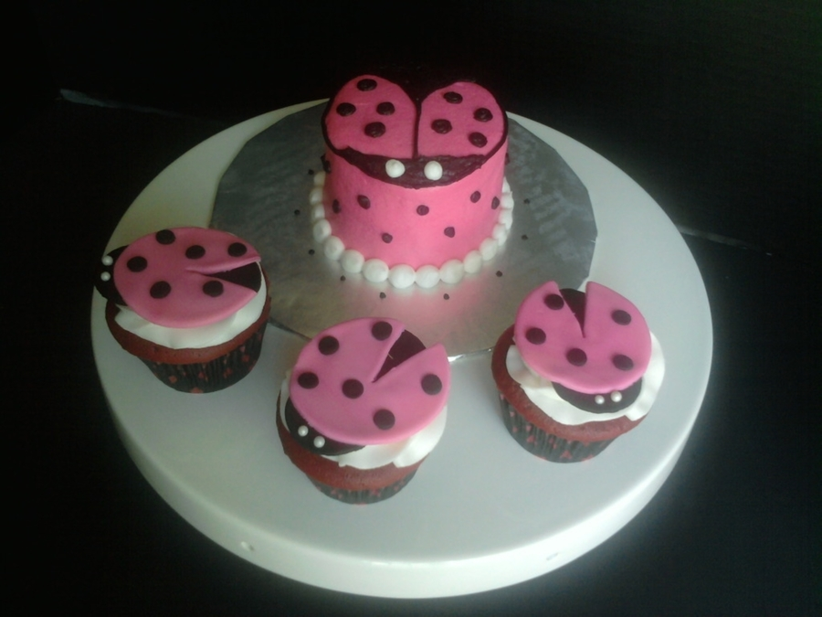 Ladybug Smash Cake With Cupcakes on Cake Central