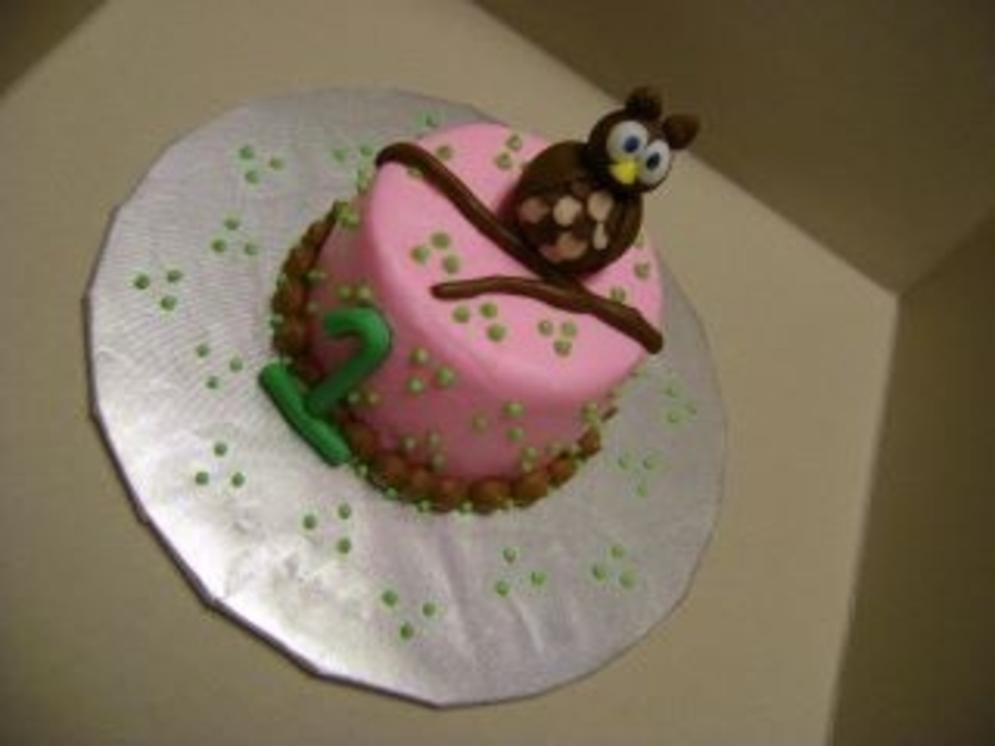 Owl Smashcake on Cake Central