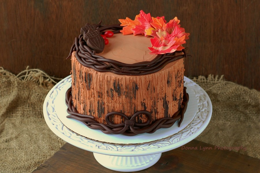 Rustic Fall Cake on Cake Central
