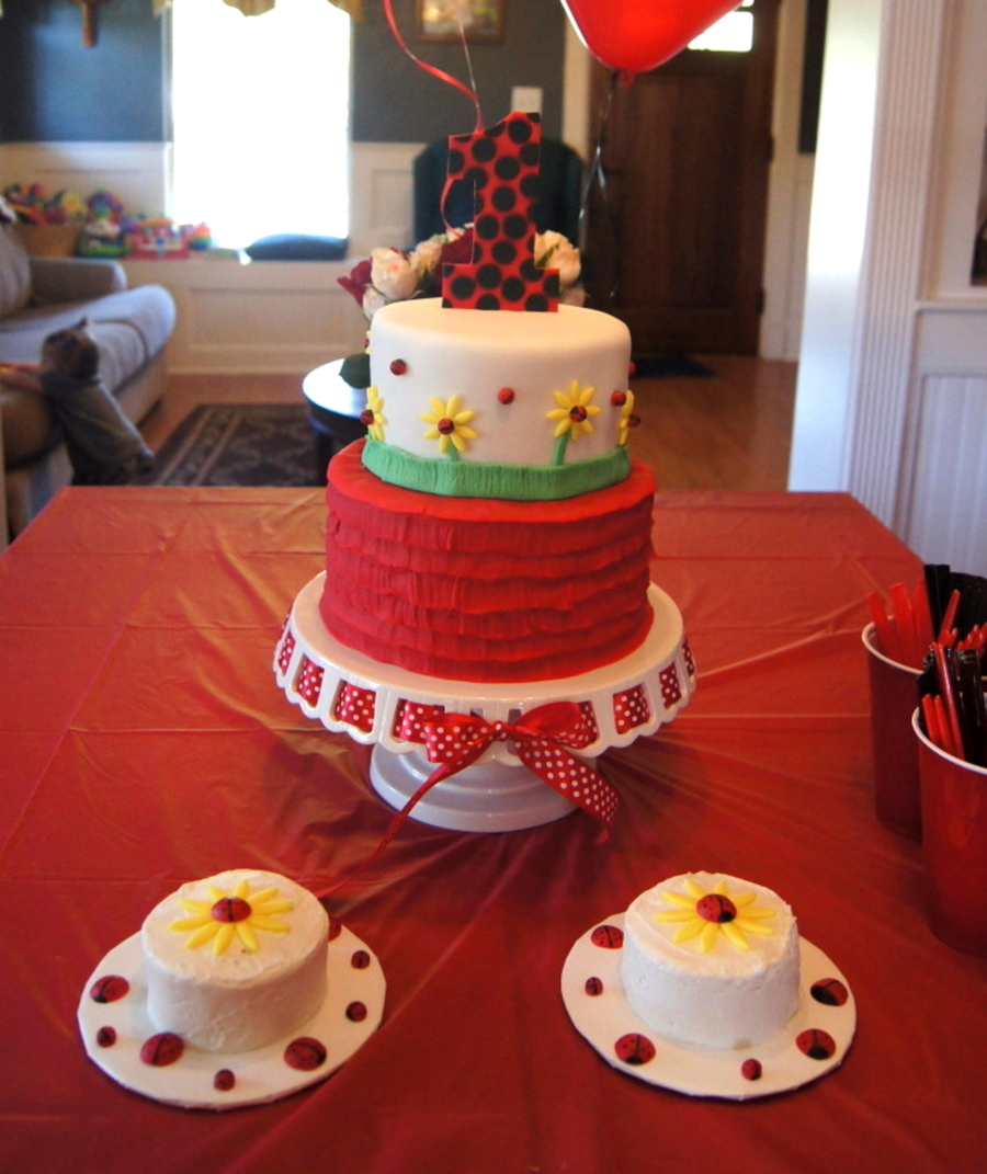 Ladybug Birthday Cake With Smash Cakes on Cake Central