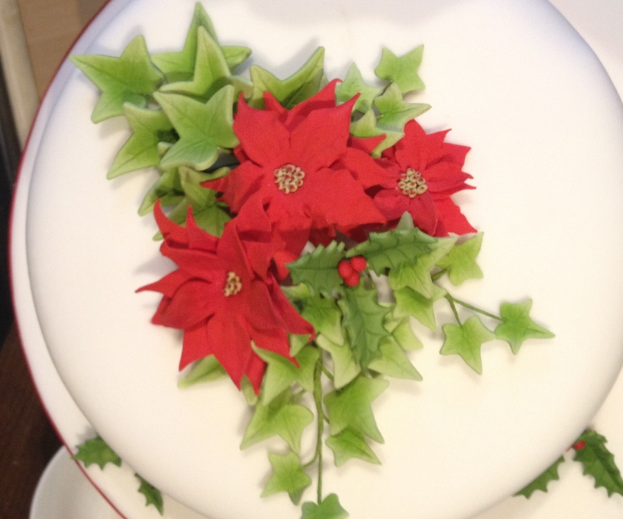 Poinsettia And Ivy Cake on Cake Central
