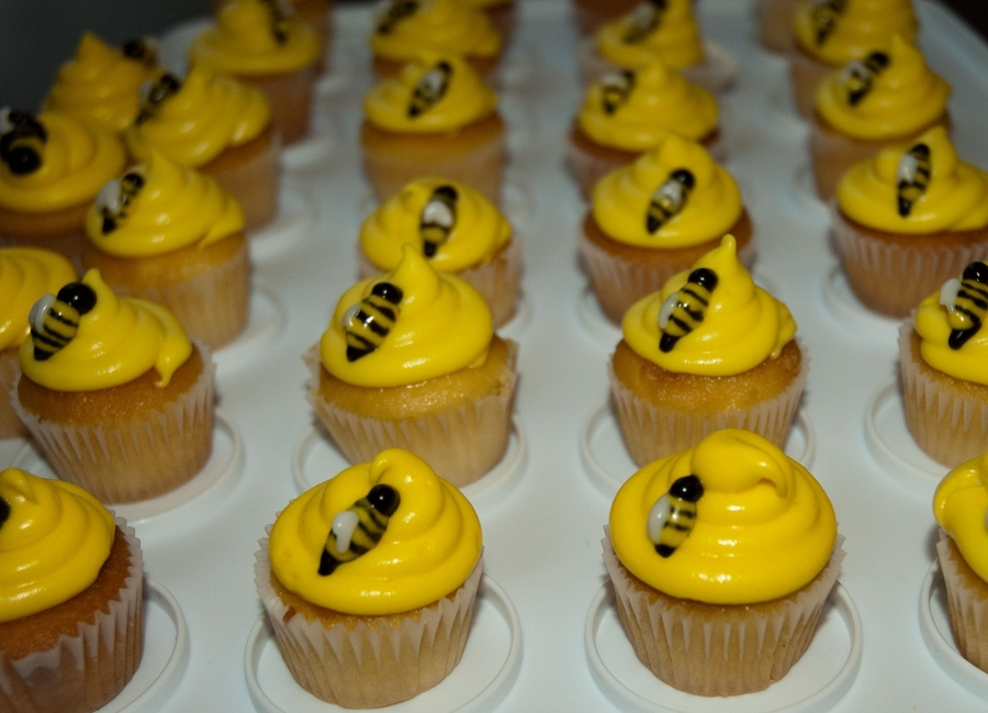 Bee Cupcakes on Cake Central