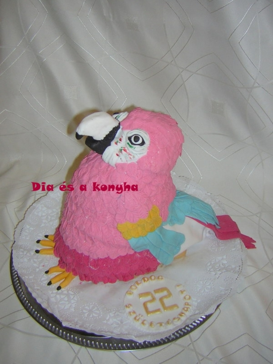 Parrot Cake  on Cake Central