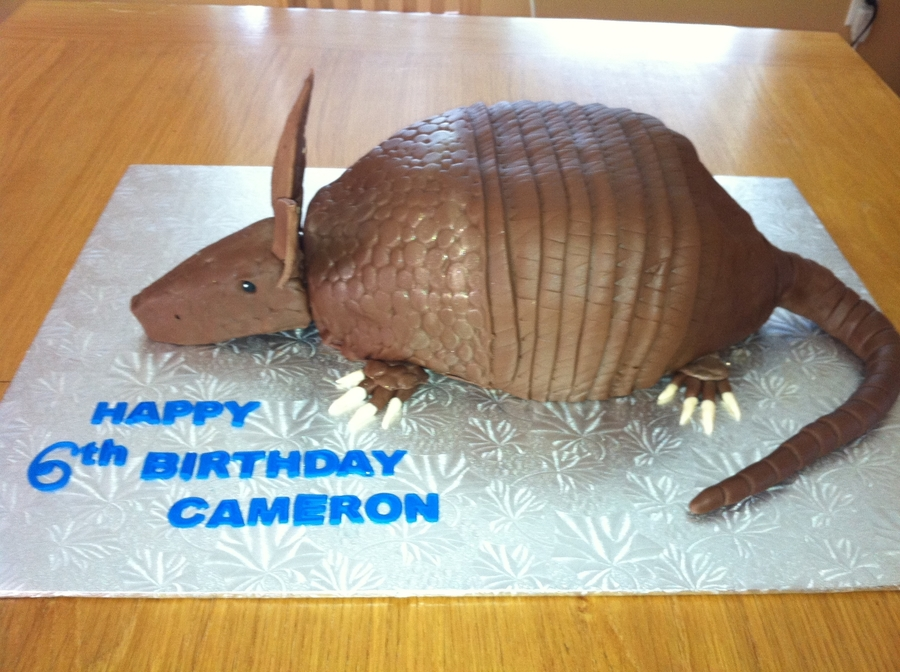 Armadillo Birthday! on Cake Central