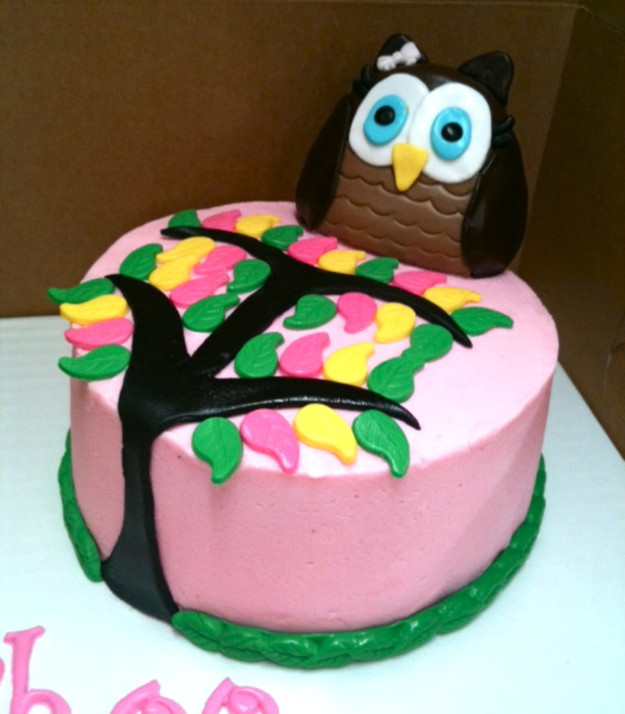 Excellent First Birthday Smash Owl Cake Cakecentral Com Personalised Birthday Cards Akebfashionlily Jamesorg
