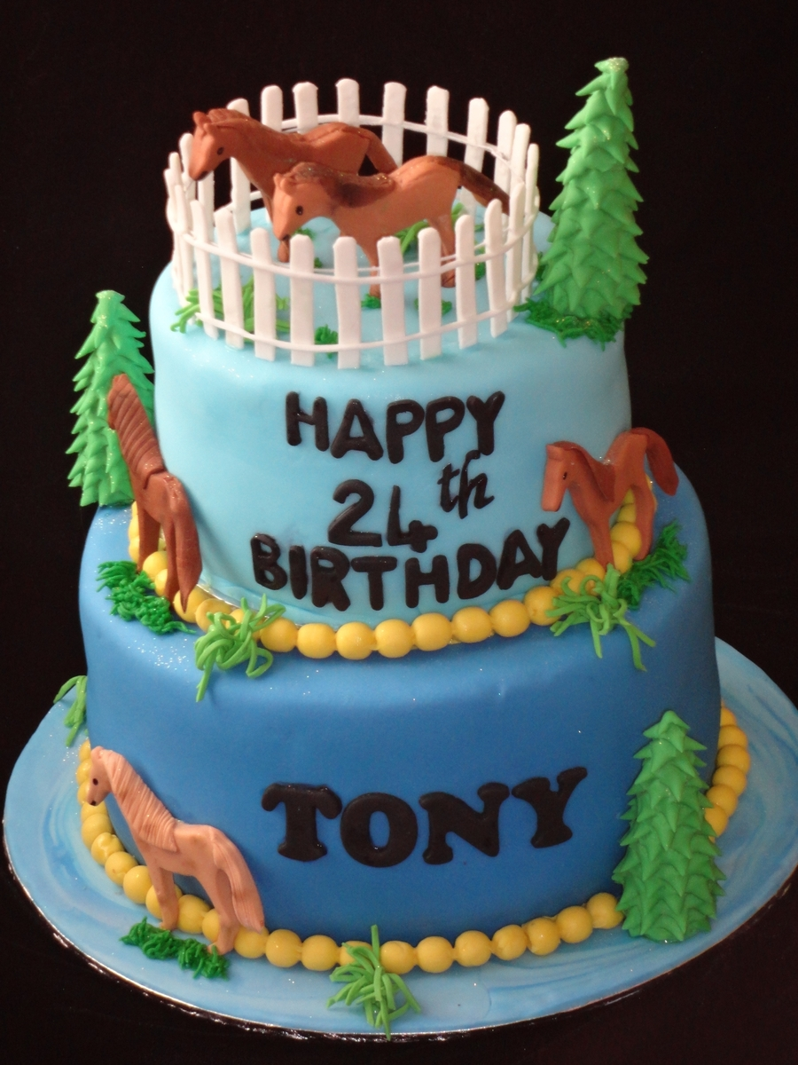 Horses Birthday Cake on Cake Central