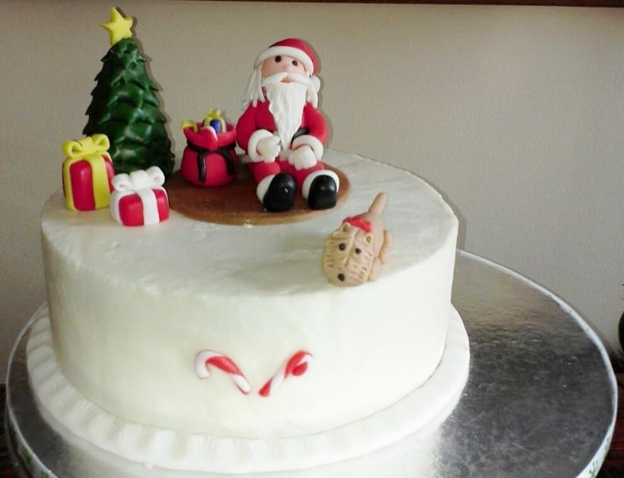 Another Santa And Puppy Cake on Cake Central