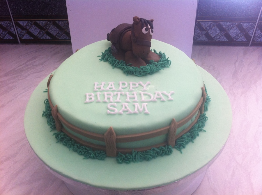 Horse Birthday Cake on Cake Central