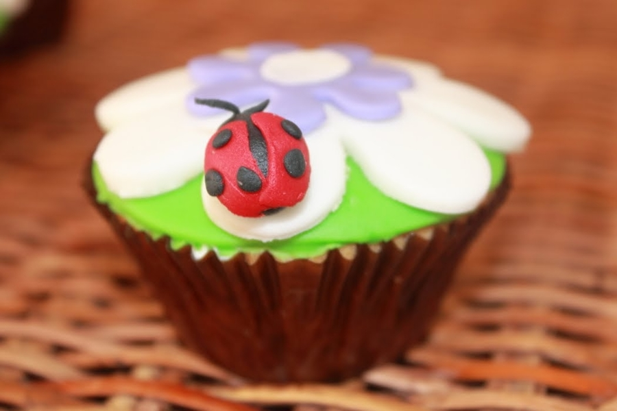 Ladybird Cupcake on Cake Central