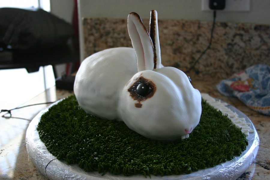 Bunny Rabbit on Cake Central
