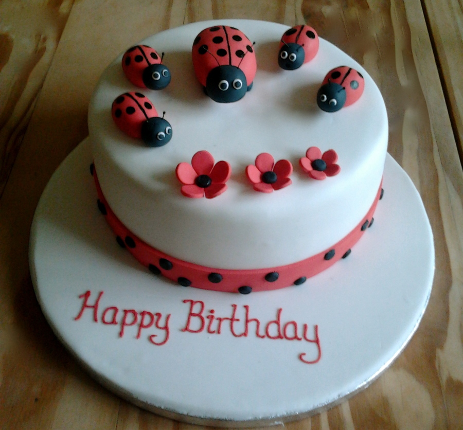 Ladybug Birthday Cake  on Cake Central