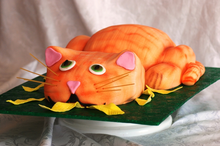 The Cat Who Ate The Canary on Cake Central