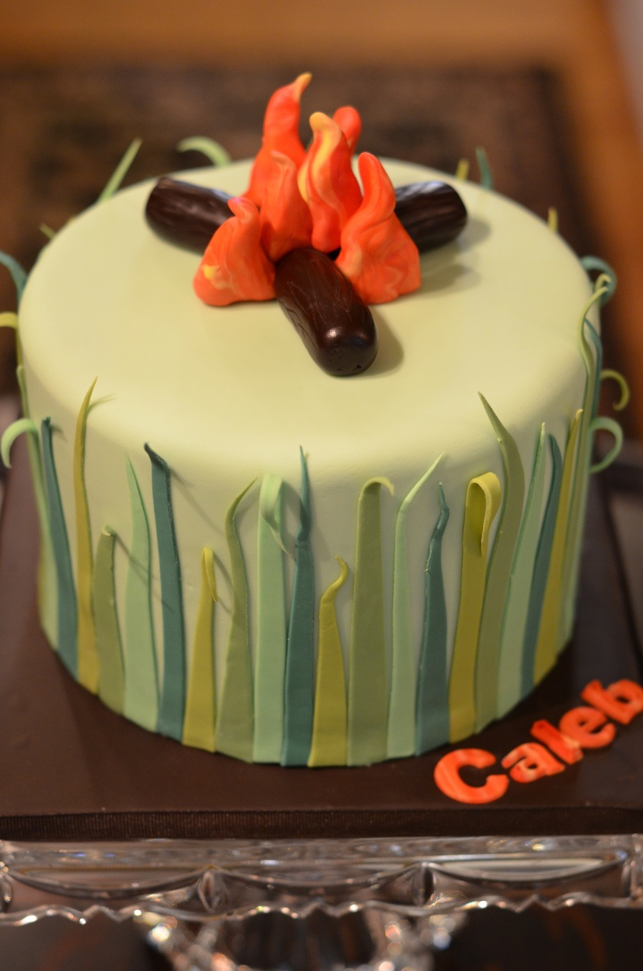 Birthday Cake For A Camping Themed Party On Central