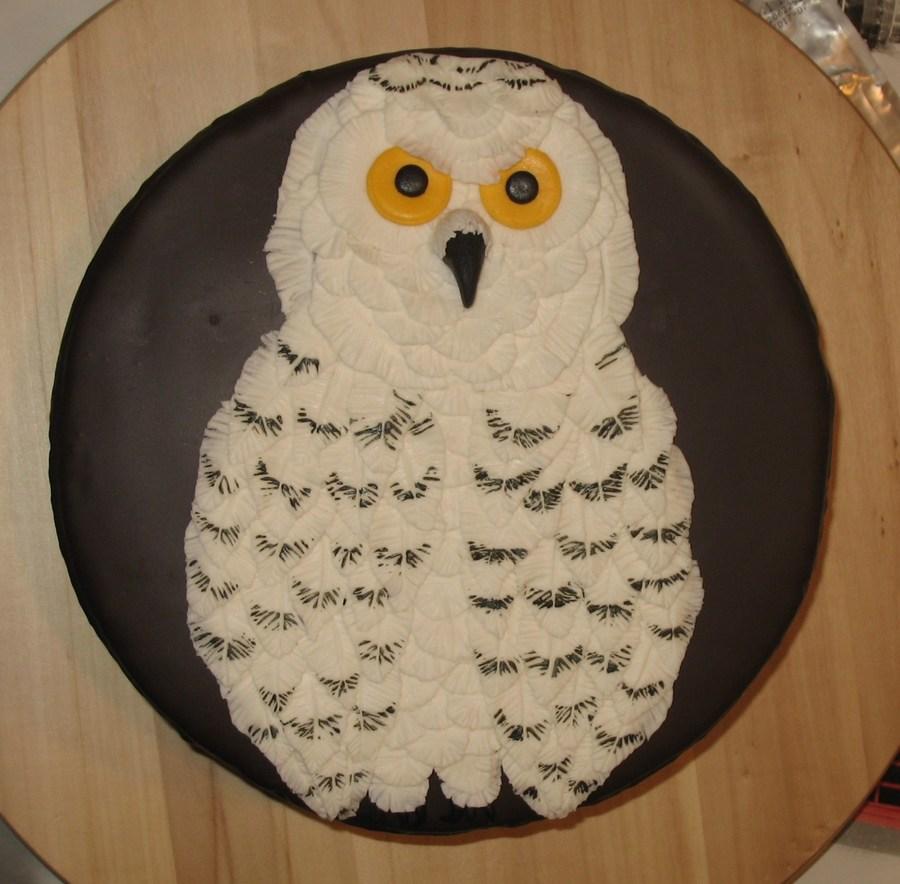 Owl Cake Decor : Snowy Owl Chocolate Cake - CakeCentral.com