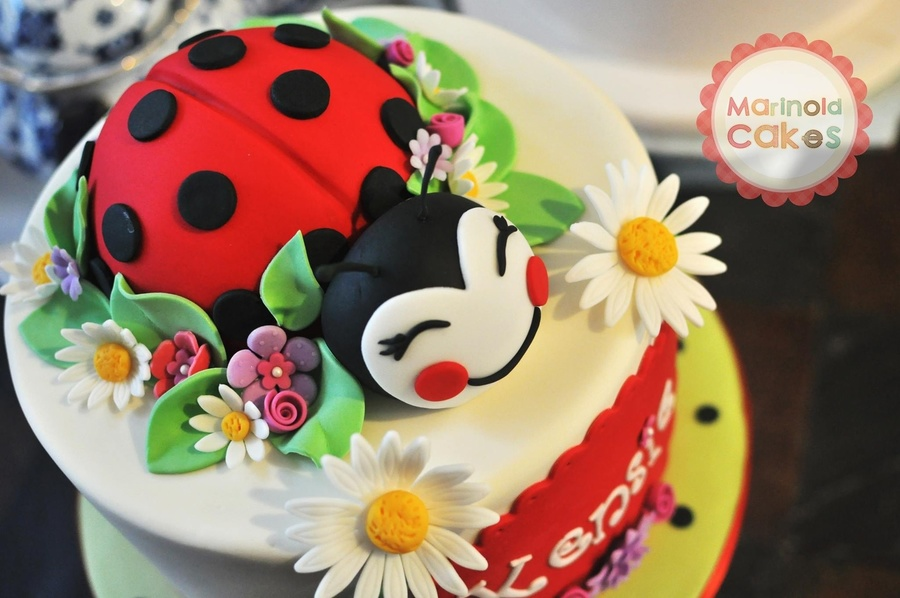 Round 9x6 Cake Topped With Ladybug In 5 Inch Dome And Fondant Head All Other Decorations Are Red Velvet Vanilla Bean Smbc Filling