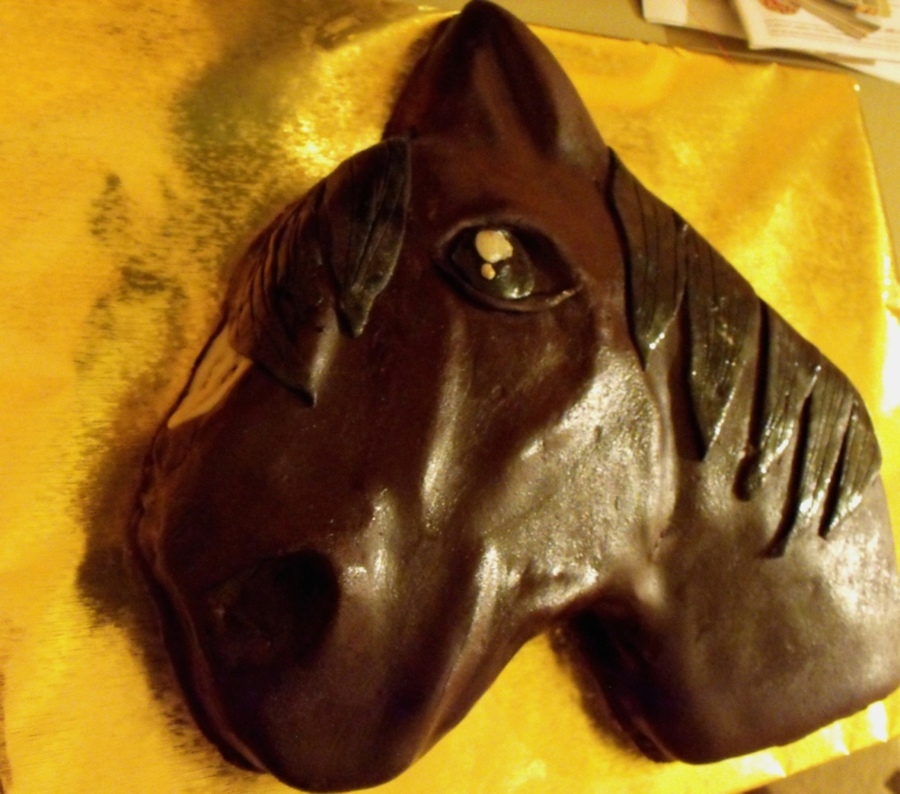 Chocolate Horse Covered In Chocolate Falvoured Marzipan on Cake Central