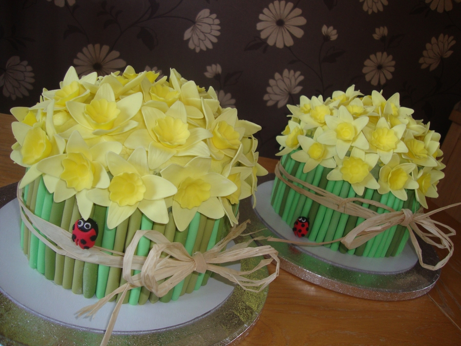 Daffodil Cakes on Cake Central