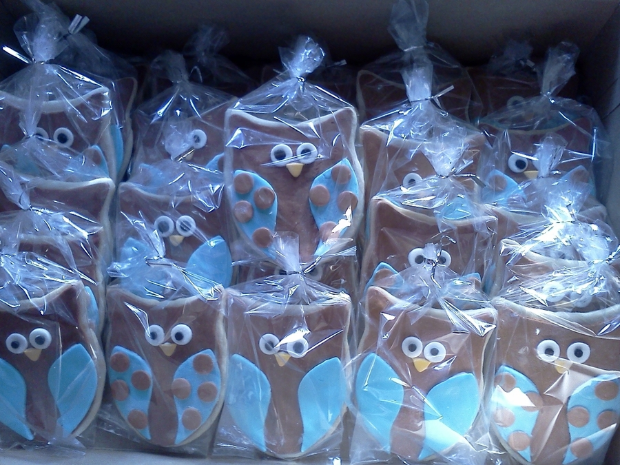 Owlet Cookies on Cake Central
